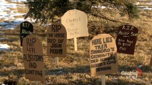 COVID-19: Cardboard tombstones placed outside Alberta health minister's office (02:11)