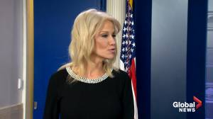 Kellyanne Conway calls articles of impeachment 'thin', 'weak'