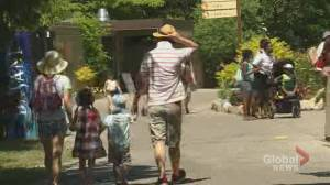 Coronavirus: Toronto Zoo reopens grounds to general public