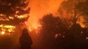 Australia wildfires continue to spread, blanket cities in hazardous smoke