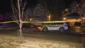 Calgary police investigate shooting in Cranston (01:12)
