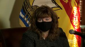 New Brunswick auditor general says more than 800 fraudulent claims were made during pandemic (01:33)