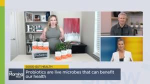 How probiotics support good gut health (03:27)