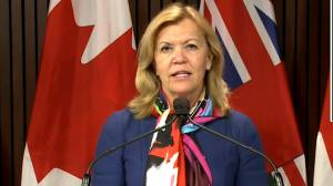 Coronavirus: Ontario COVID-19 testing investment will 'significantly expand' testing capacity, reduce wait times, Health Minister says