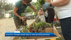 Food For Thought needs help to meet growing demand (01:41)