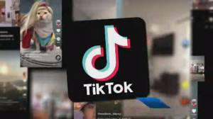 U.S. labels TikTok a 'national security threat'
