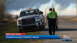 Homes evacuated as fire crews battle pair of large grassfires south of Calgary