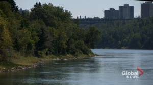 Mayoral candidates weigh in on possible national urban parks designation for Edmonton river valley (02:01)