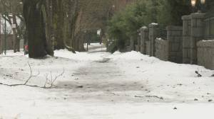 Vancouver reviewing how homeowners are fined for not shovelling walks