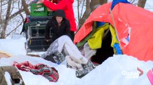 Tent city behind N.B. Government House demolished