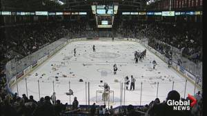 2019 Teddy Bear Toss goal