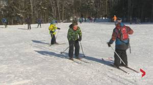 Cross-country skiing in HRM