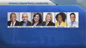 Ontario Liberals choose new leader in Mississauga Saturday (01:26)