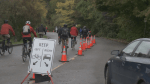 Vancouver Park Board set to debate Stanley Park bike lane