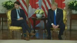 Trump calls Canada 'slightly delinquent' compared to other NATO allies