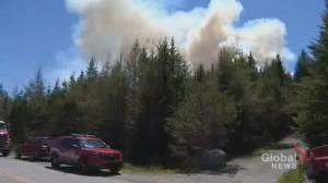 More than a 1,000 evacuated as a result of Porters Lake fire