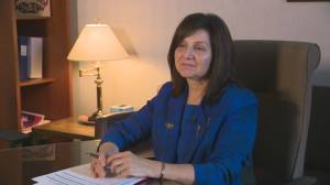 Alberta education minister speaks about curriculum review panel