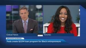 Feds create $221M loan program for Black entrepreneurs (05:29)