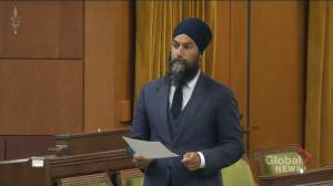 Jagmeet Singh demands Liberals take action on systemic racism amid death of Indigenous woman