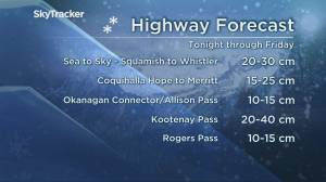 B.C. afternoon weather forecast: Nov. 12 (03:07)