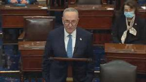 U.S. election: Chuck Schumer criticizes objection to electoral votes, says the people choose president (08:46)