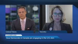Experts see an increase in expat votes in 2020 U.S. election (04:17)