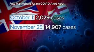 Are Manitobans using the COVID-19 Alert app? (00:32)