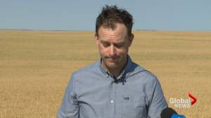 NDP calls on Alberta government to create mental health supports for farmers (01:49)