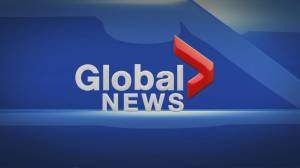 Global News at 5: Nov 8 Top Stories
