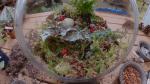 GardenWorks: terrariums