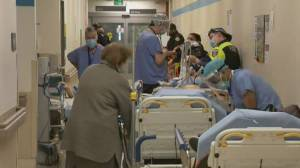 Doctors say staff shortages in Ontario ICUs continue as COVID-19 admissions climb (01:51)