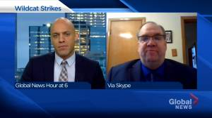 Political expert watching for next steps after Alberta wildcat strike (03:11)