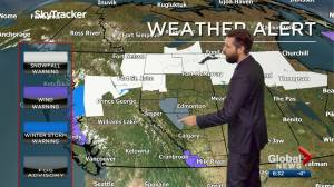 Edmonton weather forecast: Tuesday, November 17, 2020 (03:15)