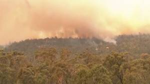 State of emergency declared as bushfire threatens Australian capital