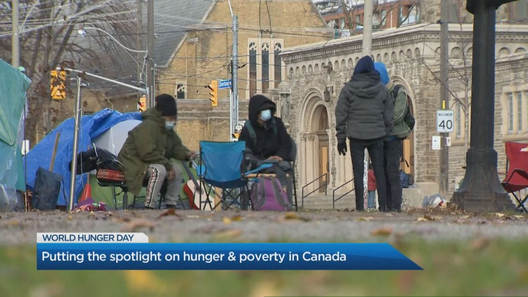 Click to play video: 'Food insecurity in Canada at 'crisis level,' says expert'