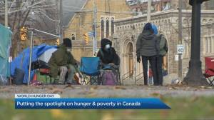 Food insecurity in Canada at 'crisis level,' says expert (04:31)