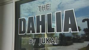 Love your Local: The DAHLIA by JUKAI (04:51)