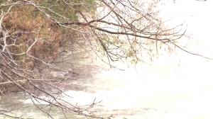 Person rescued from river near Niagara Falls, New York
