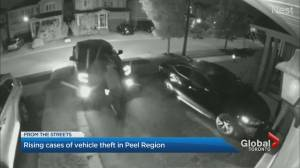 Calls for action to address rash of vehicle thefts in Peel Region (01:31)