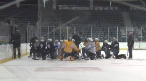 The Kingston Frontenacs look forward to a new season ahead.