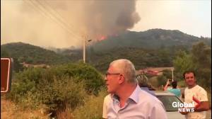 Wildfire consumes woodland near Turkey's third largest city