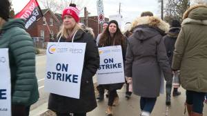 DDSB high school teachers picket during one-day strike