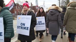 DDSB high school teachers picket during one-day strike