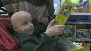 Making Legoland dream come true for B.C. boy with terminal cancer