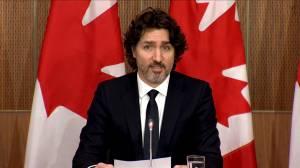Trudeau unveils details of 'assault-style' gun buyback program (03:33)