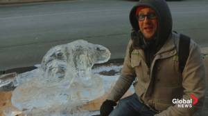 Downtown Dartmouth Ice Festival