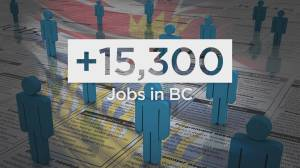 Latest job numbers indicate Canada's economy on the rebound (03:50)