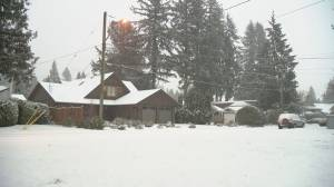 B.C. Afternoon weather forecast: Feb. 13 (04:05)