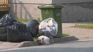 Free Waste Management Program Kicks off this Spring in HRM (05:34)