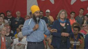 Federal Election 2019: Singh says he'll introduce federal foreign buyers' tax if elected (01:15)